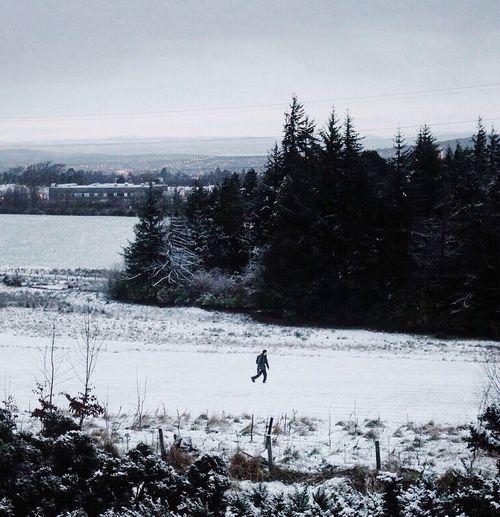 Exploring Minimalism Snow Showcase: February