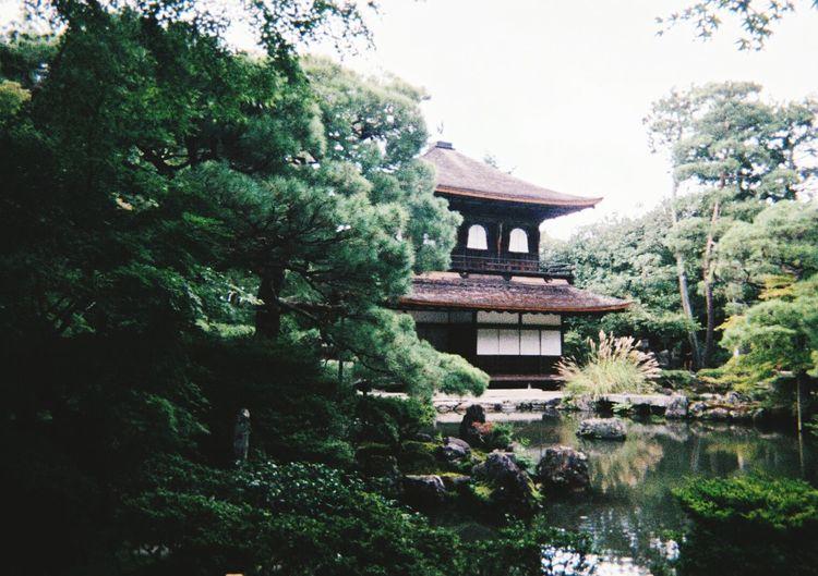 Temple Japan Ginkakuji Japanese Culture