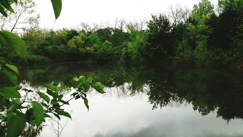 Lake Woods Water Tranquil Scene Beauty In Nature Calm Plant Day Growth Non-urban Scene Texas Green Color Life Fun Home Hometown Love Soothing Standing Water Reflection Nature Tranquility Tree Dirt Rual