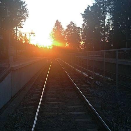 Sunrise Railroad Tracks Horizon Instadaily Beautyfulday Soloppgang Togskinner Horisont Stasjon Norgeibilder Ilovenorway IloveOslo Oslove Visitnorway Visitoslo Norsketurbilder Stakkarsoss