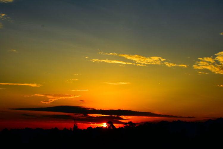 Sunrise Glory Sunrise Sunrise_sunsets_aroundworld Sunrise_Collection EyeEm Sunrises EyeEm Sunrise Shots EyeEm Sunrise Collection EyeEm Sunrise Silhouette Silhouette Yellow Sun Dramatic Sky Orange Color Horizon Sky Landscape Cloud - Sky Sky Only Calm Power In Nature
