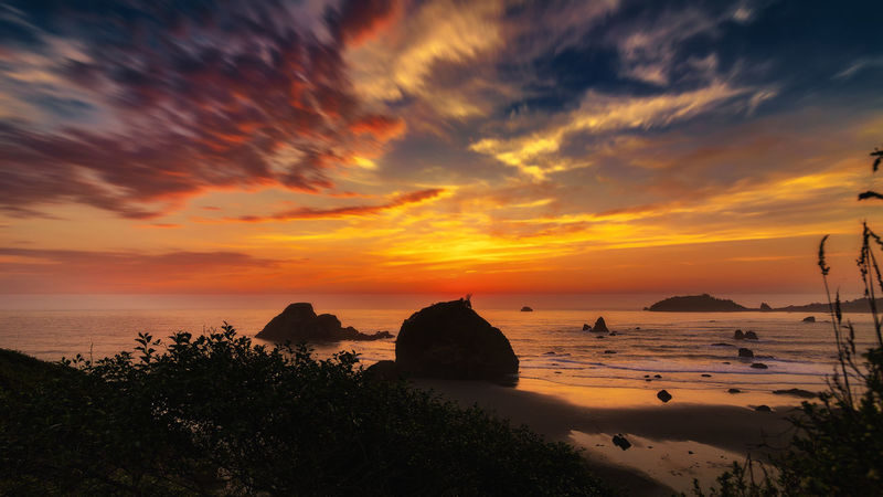 Sunset at Camel Rock. Pacific Pacific Northwest  Sunlight Sunset_collection Beach Beauty In Nature Cloud - Sky Day Horizon Over Water Nature No People Ocean Outdoors Pacific Ocean Sand Scenics Sea Silhouette Sky Sun Sunset Tranquil Scene Tranquility Tree Water