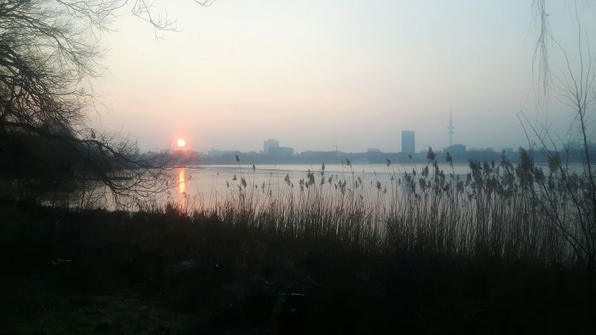 Water Sunset No People Sky Outdoors Silhouette Fog Nature Tree Beauty In Nature City Day Urban Skyline Two People Adult People Silhouette Lake Clear Sky Adults Only Only Men Standing Alsterspaziergang Alster View Alster River
