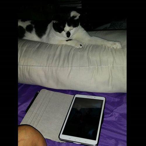Neiko watching videos on Facebook smh just too grown lmao