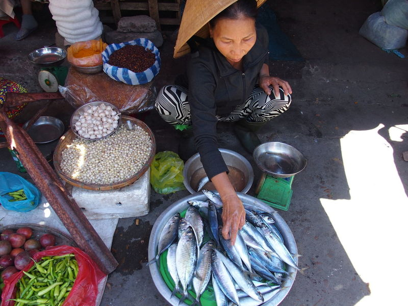 Trip in Hoi An, Vietnam August 2015. Chinese Hat Fish Food Food And Drink For Sale Freshness Hoi An Hoi An, Vietnam Market Market Tourism Vietnam Woman