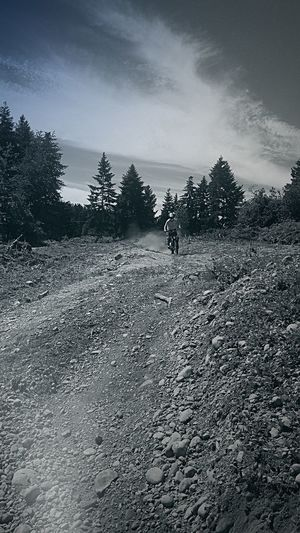 Riding High Dirt Bike Exploring New Territory Roads Less Traveled