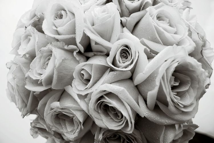 Roses Black And White Flowers Love Romantic Romance Bouquet Wedding Wedding Photography Weddingbouquet