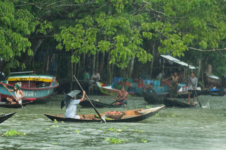 Boats in river against trees
