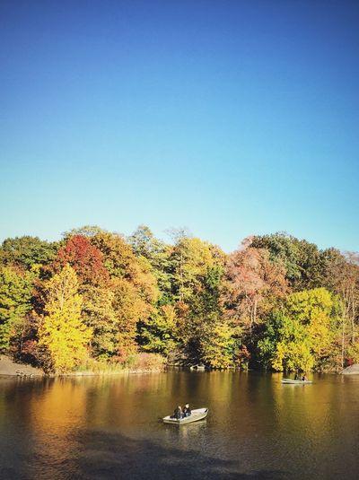 Central Park - NYC Boat Lake Park Manhattan New York Fall Autumn Eyeem Philippines The Week On EyeEm EyeEm Gallery EyeEm Nature Lover VSCO