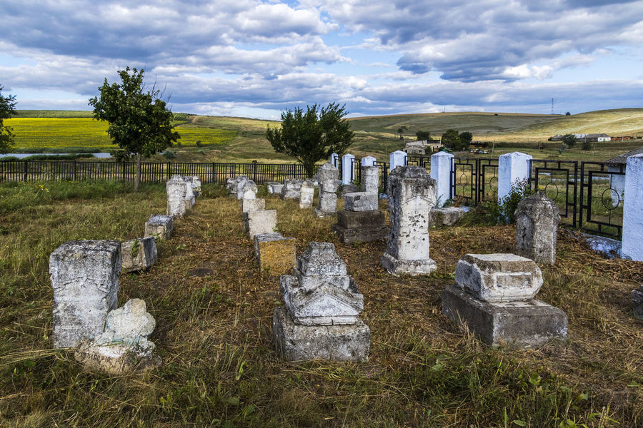 Cementary Cloud - Sky Grass Graves Gravestone Landscape Moldova No People Tree