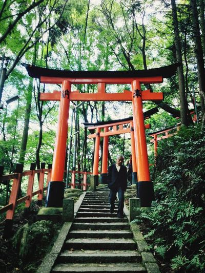Kyoto , Japan ,