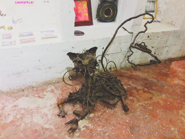 Is that a cat??? You bet it is Exploring Lima Galleries Metal OldButGold