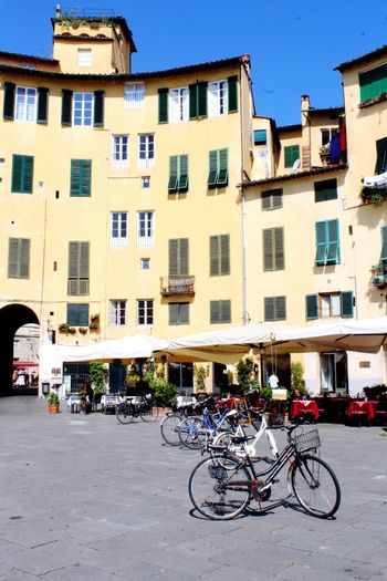 Lucca Italy Lucca Italy Architecture_collection Building Exterior Bicycle Architecture Built Structure Transportation Mode Of Transportation Land Vehicle City Building Street Window Day Sunlight Sky City Street Outdoors