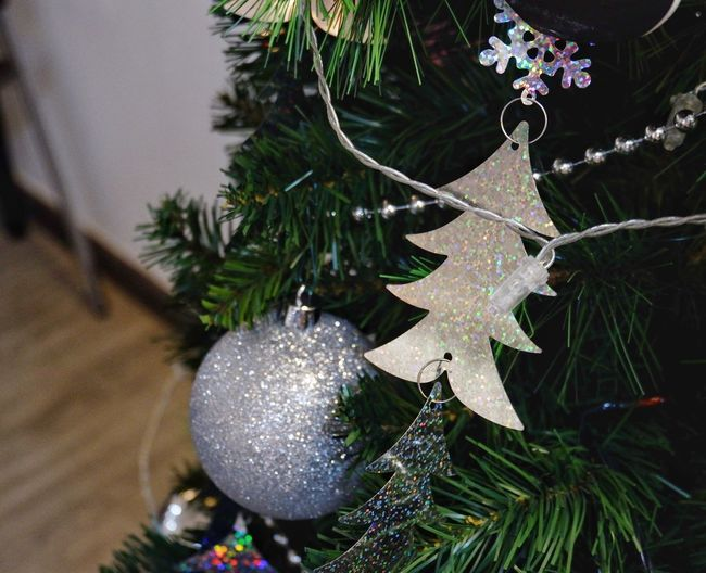 Silver sparkling ornaments are decorated Christmas tree Holiday Winter Tree Glitter Silver  Ball Christmas Christmas Tree Christmas Decoration Celebration Decoration Christmas Ornament Hanging Close-up Tradition Tree No People Indoors  Christmas Lights Celebration Event Holiday - Event