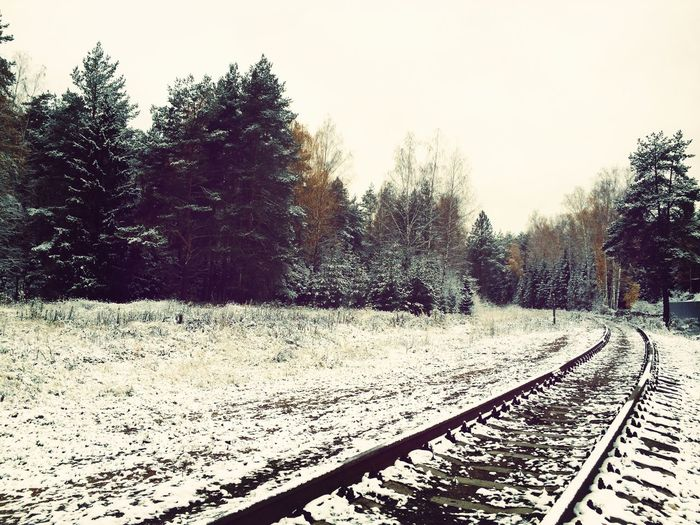 Russia Snow Snow Forest Snow Day Forest Raylways Raylway Traveling