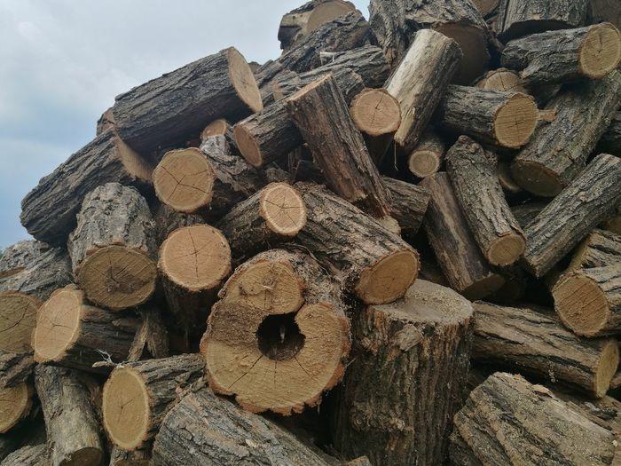 Forestry Industry Woodpile Stack Industry Timber Heap Log Deforestation Wood - Material Environmental Issues