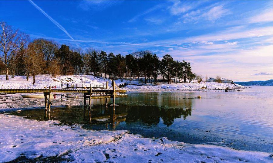 Memories of March #xf10-24mmF4 #fujifilmxpro1 Fujifilm_xseries #vsco #water #sea #fjord #norway #Oslo Beauty In Nature Tree Sky Nature Cloud - Sky Reflection Beach Land