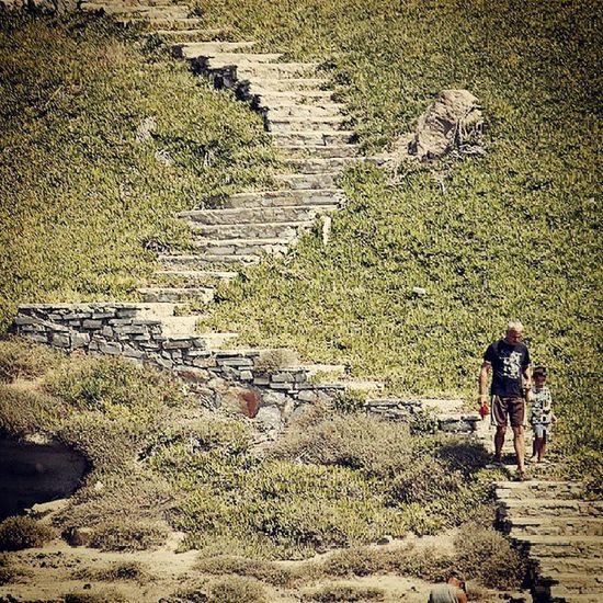 Babaoğul Baba Bodrum Turgutreis  merdivenler stairs