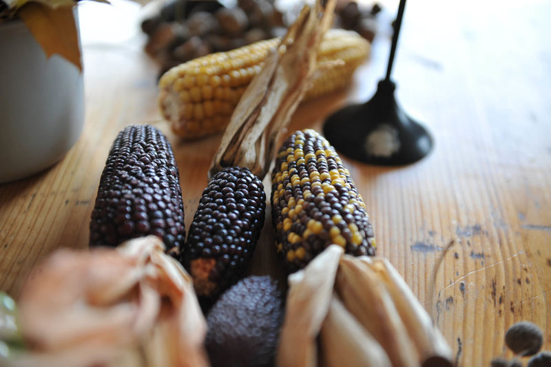 Dried corn on the table