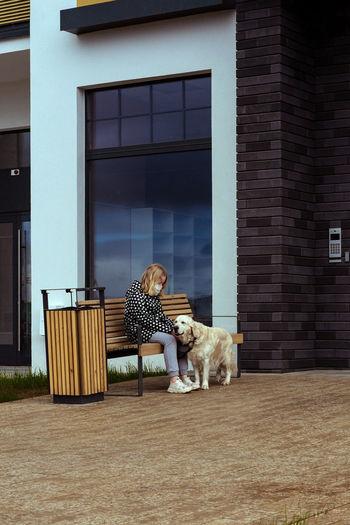 Dog sitting outside building