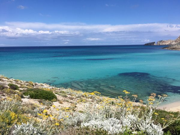 Mar Mediterraneo Beauty In Nature Water Scenics - Nature Sea Tranquil Scene Sky Tranquility Nature Day Idyllic Blue Travel Destinations Horizon Over Water No People Beach