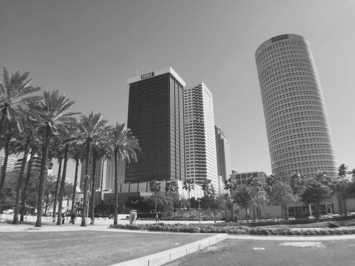 Downtown Tampa Curtis Hixon Park Boricua Photography Blackandwhite