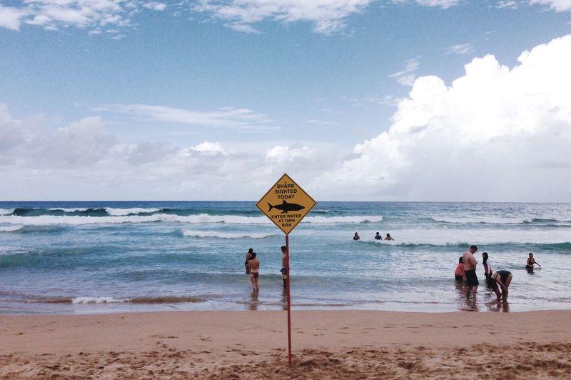 Shark sighting EyeEmNewHere Shark Beach Land Sea Sky Water Cloud - Sky Group Of People Horizon Lifestyles Outdoors
