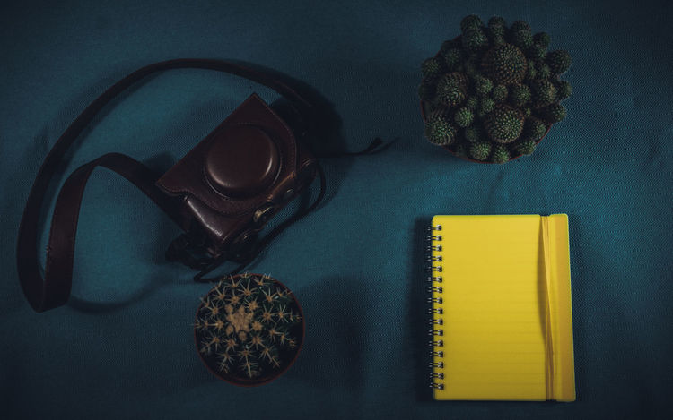 Table Indoors  Directly Above High Angle View Book Close-up Notebook Plants Ready To Go Desk Text Space Vintage Style Camera Bag Camera - Photographic Equipment Studio Shot Dark Blue Background Notebook Paper Leather Bag Cactus Plant Yellow Notepaper Desk From Above Taste Of Travel Journalist