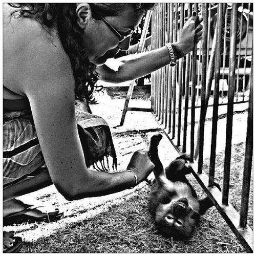 Little Monkey ~ 3 ~ Bnw_photography Bw_shotz B_w Bw_instagram bw bws_worldwide bnw_girls bnw_captures bnw_wonderful bnw_capture bwlovers bestshooter bnw cute monkey animal_captures animal frenchgirl igaddict ig_captures ig_nature_captures ig_captures_nature ig_captures_bw tagsforlikes photography photoofday photodujour bestoftheday