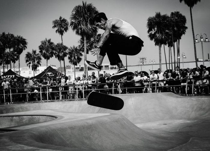 View of skateboard in park