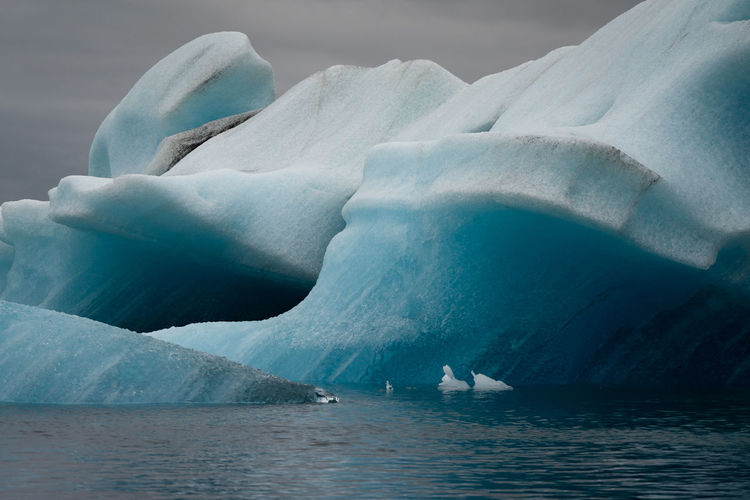 Close-Up Of Icebergs On Sea