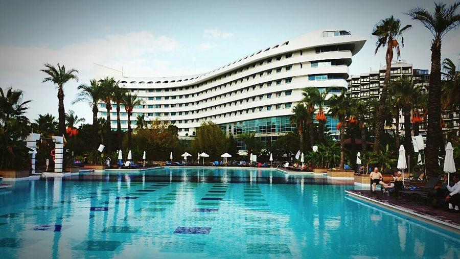 Holiday Swimming Pool Luxury Tourist Resort Palm Tree Travel Summer Sky Concordedeluxeresort