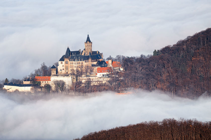 Architecture Building Exterior Built Structure Nature Sky Cloud - Sky Building No People Day Tree Beauty In Nature Scenics - Nature Travel Destinations Plant Motion Land Outdoors Water Fog Wernigerode Harz Harzmountains Castle