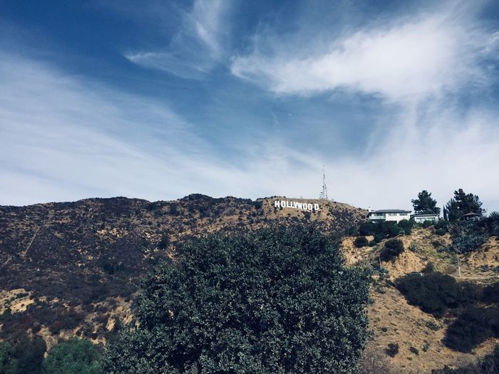 Hollywood Hollywood Sign Hollywood EyeEm Selects Sky Cloud - Sky Nature Plant Tree Day Built Structure Building Exterior Architecture No People Sunlight Outdoors Growth Low Angle View City Beauty In Nature Environment Tranquility Land Scenics - Nature