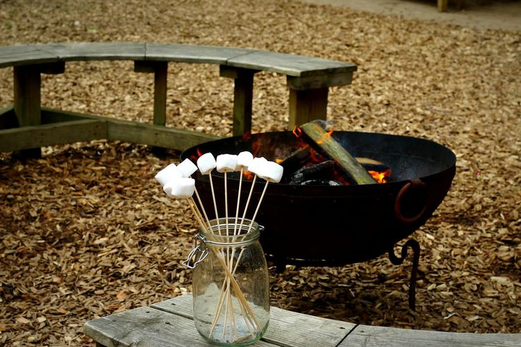 Fire Camping Marshmallows Outdoors