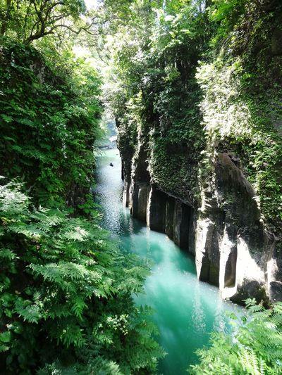 高千穂 Healing River Green Hidden