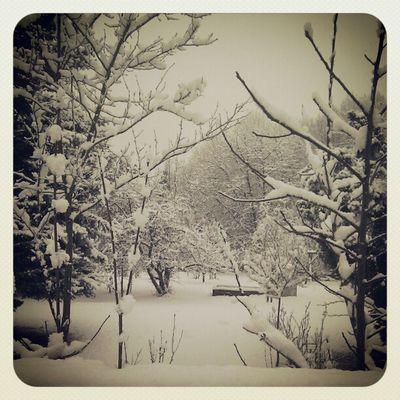 Let it snow, let it snow, let it snow. :)