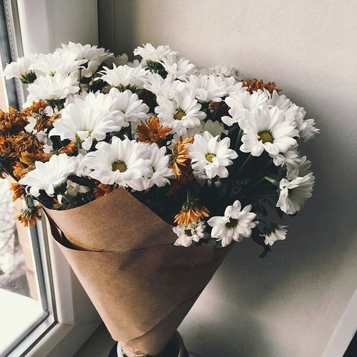 👸 Flower Vase Indoors  Flower Arrangement Bouquet No People Close-up Gerbera Daisy Flower Head Day Freshness Beauty In Nature Analoglove Nature Winter Sky Winter Nature Photography Daisy 🌼 Daisies Are My Favorite Daisen Daisara Daisies In Nature Daisies Black And White Closeup Daisy Flower Head Daisy Close Up