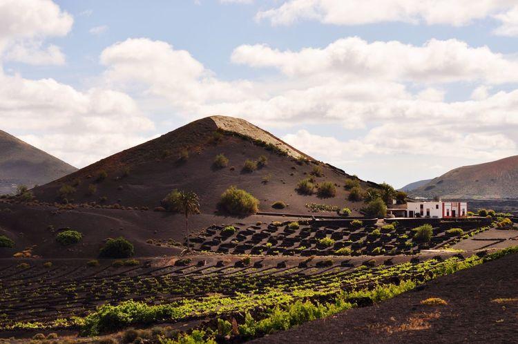 EyeEm Selects Mountain Cloud - Sky Agriculture Landscape Lanzarote Island Lanzarote No People