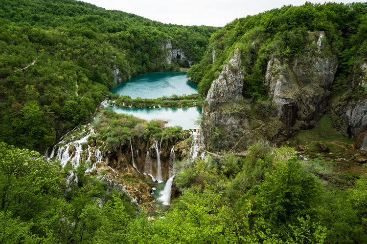 Beauty In Nature Day Flowing Flowing Water Forest Green Color Growth Idyllic Lake Lush Foliage Motion Nature No People Non-urban Scene Outdoors Plant Plitvice National Park Politic Lakes National Park Scenics Tranquil Scene Tranquility Tree Water Waterfall Waterfalls