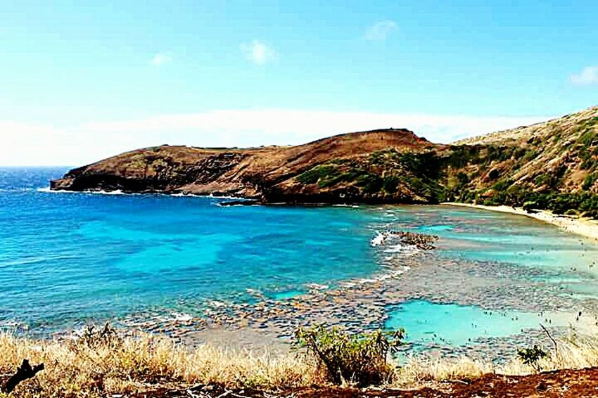 Check This Out Oahu, Hawaii Streamzoofamily Traveling Sightseeing Tadaa Community Tropical Snorkeling