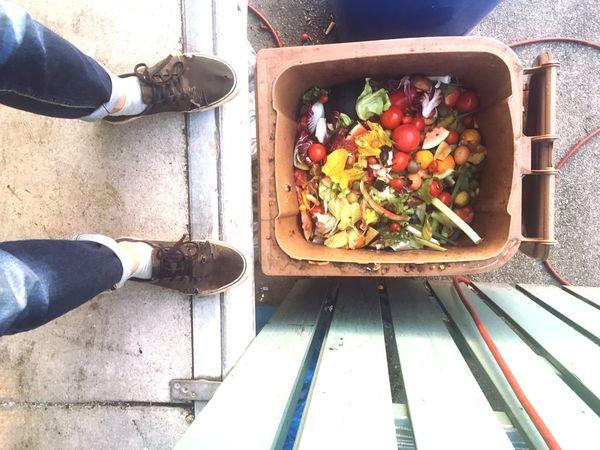 Trash Wasting Food Food Waste Food Trash