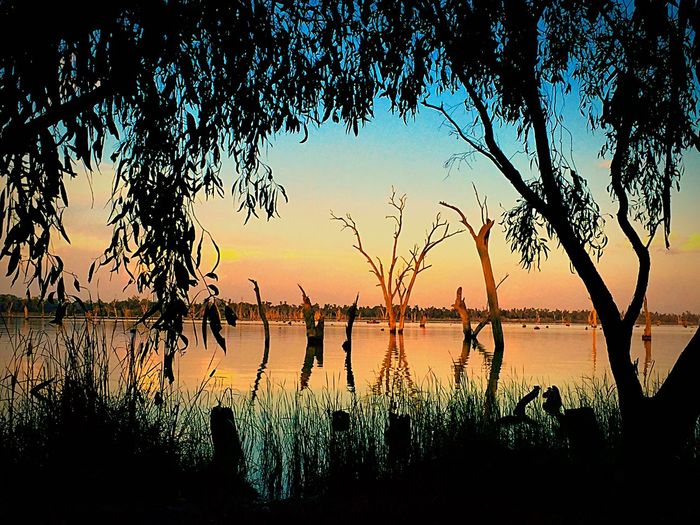 The Great Outdoors - 2016 EyeEm Awards Hello World Stunning Natural Beauty On My Door Step Lake Mulwala Amazingly Beautiful Water Wonders
