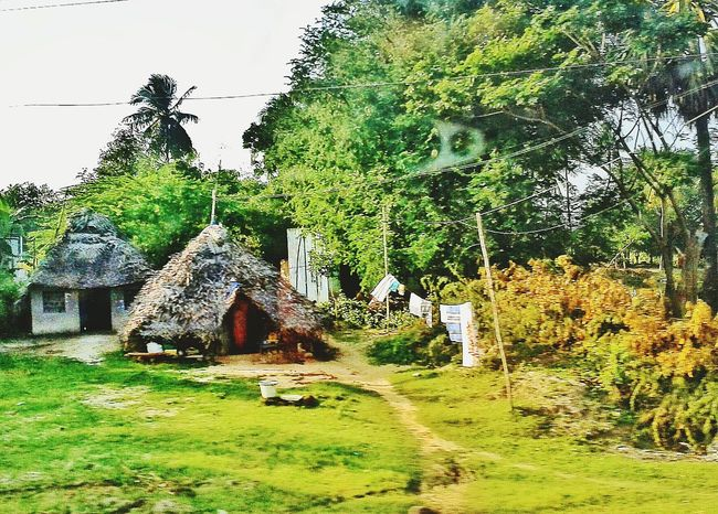 """""""Without Love 💗 the rich and the poor live in the same house"""" Feeling Thankful Nature By My Side No Worries Happy People Free Open Edit Tamilnadu near Velankanni Huts EyeEm Nature Lover"""