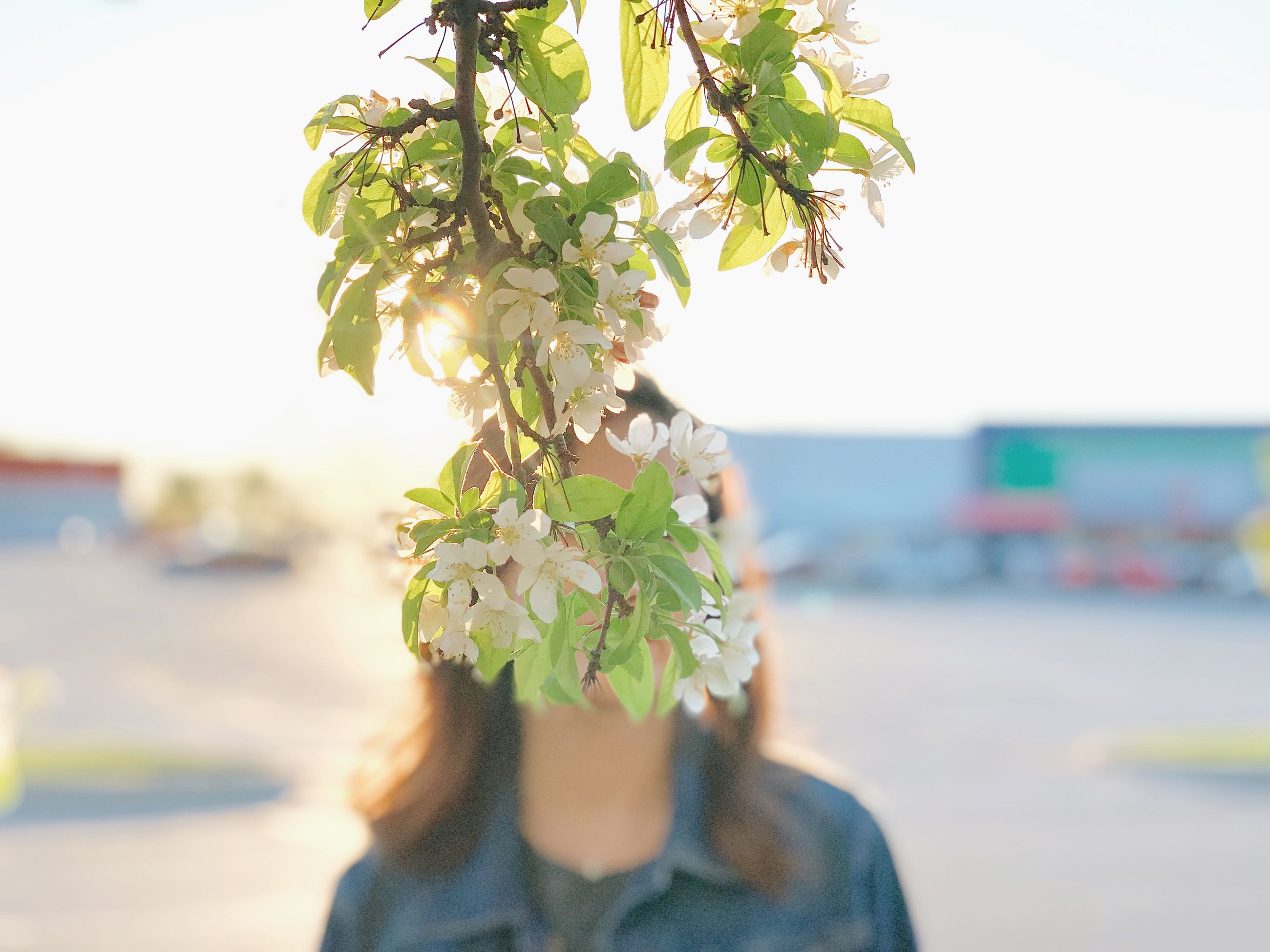 one person, nature, plant, real people, day, leisure activity, focus on foreground, headshot, portrait, beauty in nature, close-up, lifestyles, leaf, plant part, sea, outdoors, flowering plant, sky, flower, human body part, body part, obscured face, flower head, human face