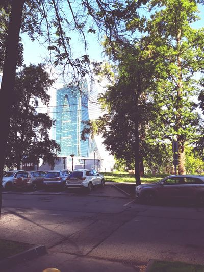 morning in the Presnya Moscow City Capital Photooftheday Instagramanet Beautiful Followme Follow Selfie Picoftheday Instadaily Like4like Fun Tree City Road Car Sky Architecture Street Art Motor Scooter Land Vehicle Side-view Mirror Parking Car Point Of View