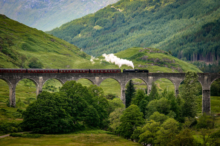 Arch Architecture Bridge - Man Made Structure Built Structure Connection Day Forest Glenfinnan Glenfinnan Viaduct Locomotive Mountain Nature No People Outdoors Rail Transportation Railroad Track Scenics Scotland Steam Train Train - Vehicle Transportation Tree Viaduct