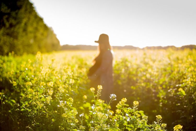 Flower Field Tranquil Scene Selective Focus Tranquility Scenics Nature Growth Non-urban Scene Beauty In Nature Person Green Day Green Color Grassy Portrait Pregnant Wife Girl Girls Nikon Nikonphotography Nikond750 Sun Sunlight