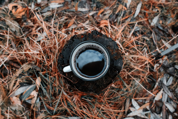 Metal mug with a hot drink in an autumn forest. top view