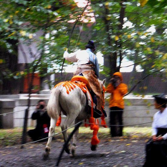 流鏑馬(其の参) Yabusame Archery Horse Culture